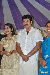 Actress Navya Nair Marriage Wedding reception Photos (46)