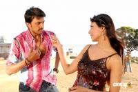 Rowdy Simha Telugu Movie Photos Stills