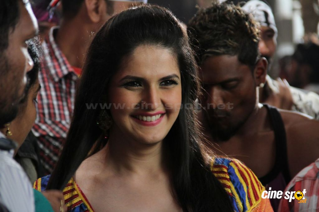 Zarine Khan Hot Zarine Khan Hot Stills  4