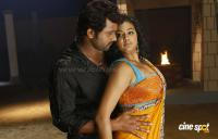 Thikka Telugu Movie Photos