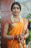 Shriya Photos in Pavithra (24)