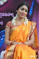 Shriya Photos in Pavithra (3)