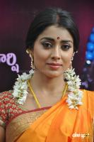 Shriya Photos in Pavithra (4)