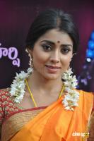 Shriya Photos in Pavithra (5)