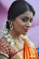 Shriya Photos in Pavithra (6)
