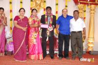Actor Kottai Perumal Daughters Marriage Reception Photos