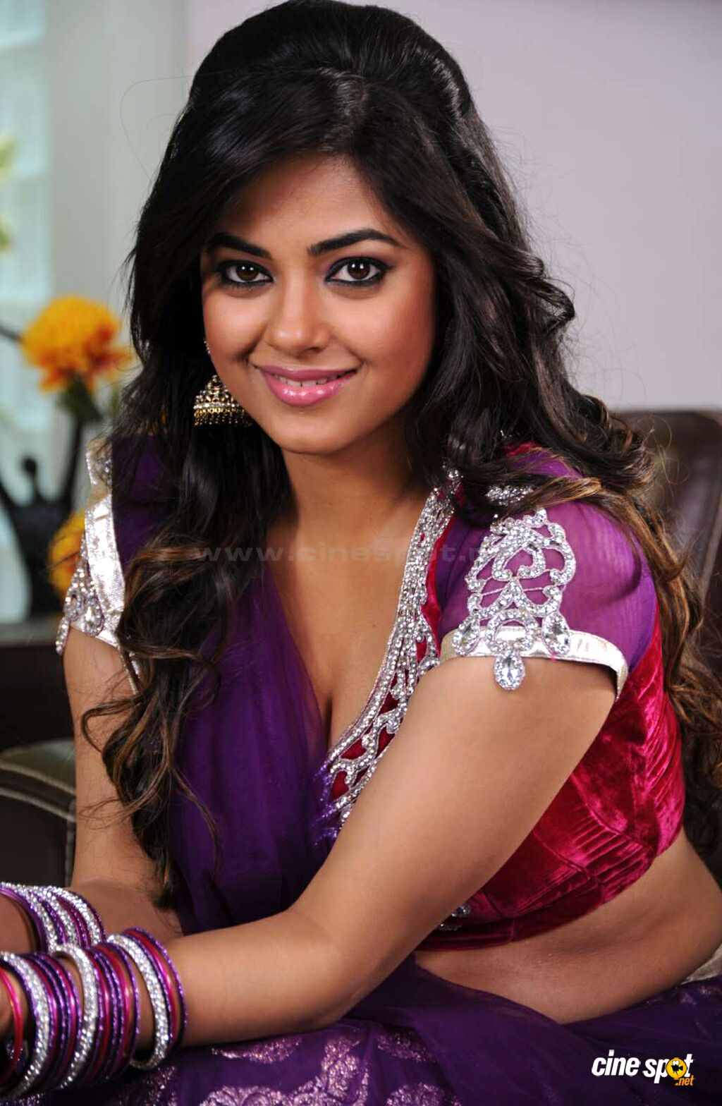 Meera Chopra in Greeku Veerudu (1)