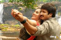 Sahasam Telugu Movie Photos