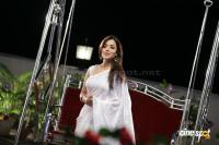 Nisha Agarwal white Saree Stills (5)