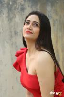 Komal Sharma Actress Photos