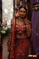 Star One's Love Ne Mila Di Jodi wedding sequence Photos (6)