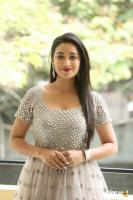 Bhanu Tripathi Telugu Actress Photos