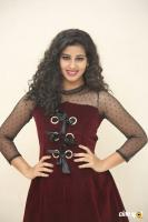 Pavani Telugu Actress Photos