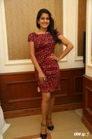 Vishakha Singh at Rowdy Fellow Success Meet (24)