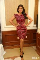 Vishakha Singh at Rowdy Fellow Success Meet (25)