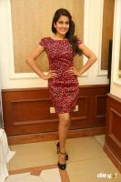 Vishakha Singh at Rowdy Fellow Success Meet (26)