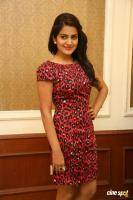 Vishakha Singh at Rowdy Fellow Success Meet (27)