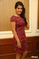 Vishakha Singh at Rowdy Fellow Success Meet (28)