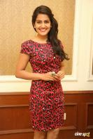 Vishakha Singh at Rowdy Fellow Success Meet (29)