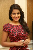 Vishakha Singh at Rowdy Fellow Success Meet (3)