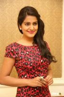Vishakha Singh at Rowdy Fellow Success Meet (30)