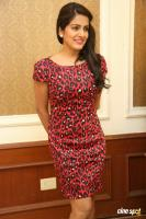 Vishakha Singh at Rowdy Fellow Success Meet (31)