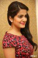 Vishakha Singh at Rowdy Fellow Success Meet (33)