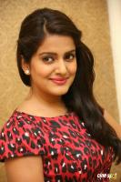 Vishakha Singh at Rowdy Fellow Success Meet (34)