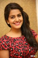Vishakha Singh at Rowdy Fellow Success Meet (35)