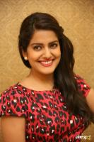 Vishakha Singh at Rowdy Fellow Success Meet (36)