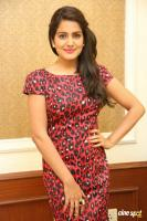 Vishakha Singh at Rowdy Fellow Success Meet (37)