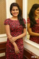 Vishakha Singh at Rowdy Fellow Success Meet (38)