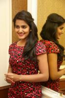 Vishakha Singh at Rowdy Fellow Success Meet (39)