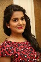 Vishakha Singh at Rowdy Fellow Success Meet (4)