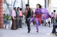 Vijay Anushka in Vettaikaran New Stills