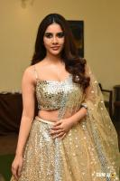 Nabha Natesh Actress Photos