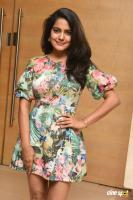 Vishakha Singh at Cosmoglitz Awards 2nd Edition (3)