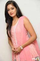 Meghana Raj at Vamshodharaka Press Meet (2)