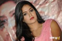 Meghana Raj at Vamshodharaka Press Meet (6)
