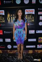 Mamta Mohandas at IFFA Photos (12)