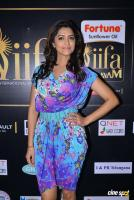 Mamta Mohandas at IFFA Photos (13)