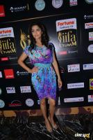 Mamta Mohandas at IFFA Photos (14)