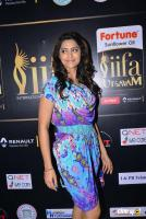 Mamta Mohandas at IFFA Photos (15)