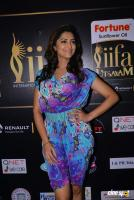 Mamta Mohandas at IFFA Photos (18)
