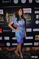 Mamta Mohandas at IFFA Photos (19)