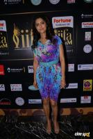 Mamta Mohandas at IFFA Photos (2)