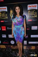 Mamta Mohandas at IFFA Photos (9)