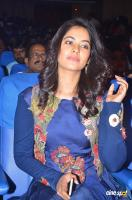 Bindu Madhavi at V4 Award Function (1)