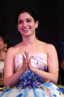 Tamannaah at Filmfare Awards 2016 (1)