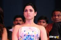 Tamannaah at Filmfare Awards 2016 (15)